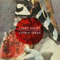 "Terry Malts/Dead Angle split 7"" image"
